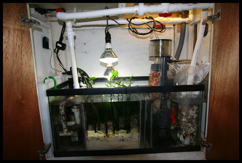 Sump Example