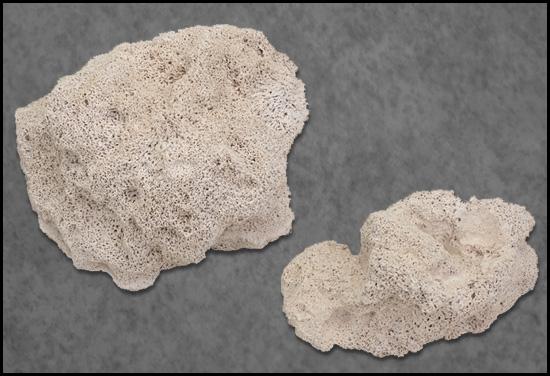 marine pure rock ceramic biofilter media with box at algaebarn