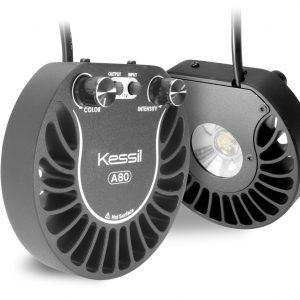 Kessil A80