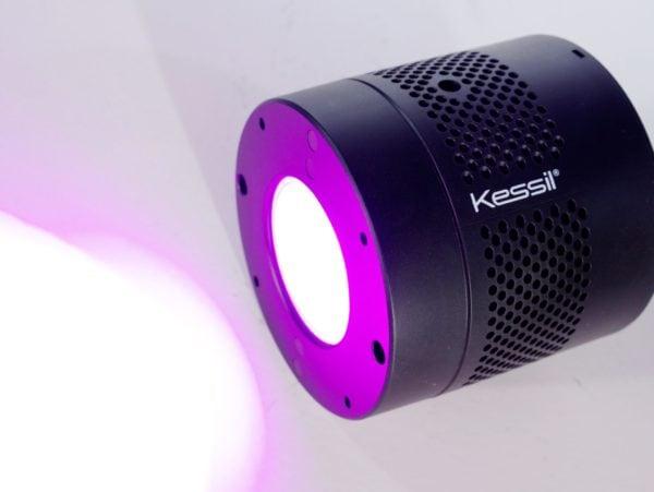 Kessil H380