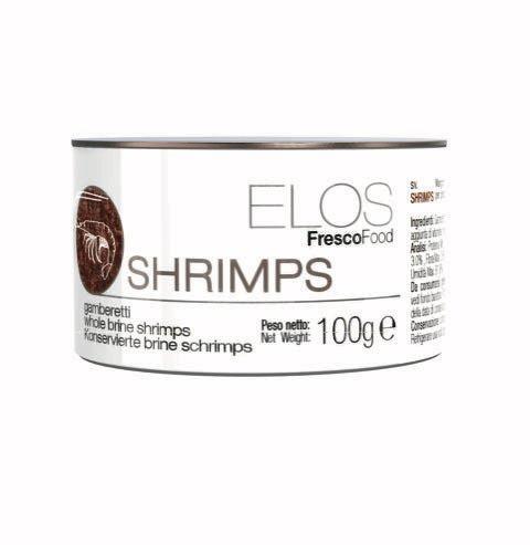 brine shrimp