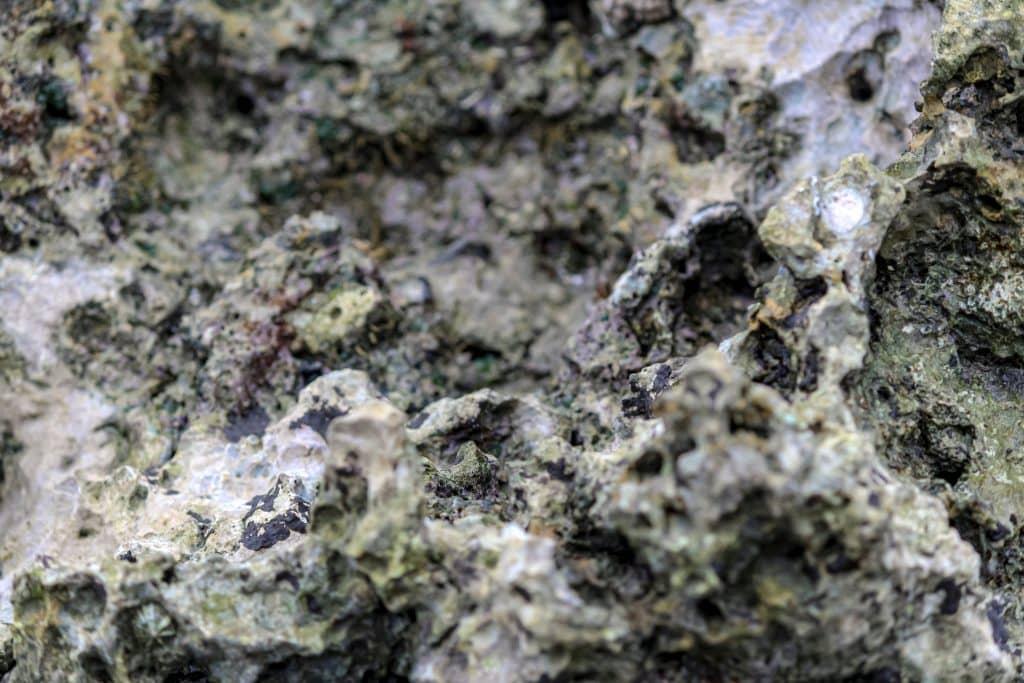 Ocean Rock is often Coral Skeletons