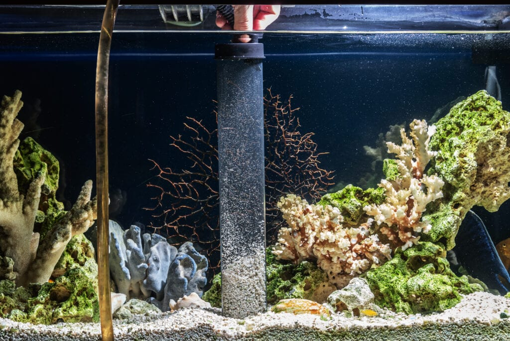 There are tons of useful tools for aquarium maintenance